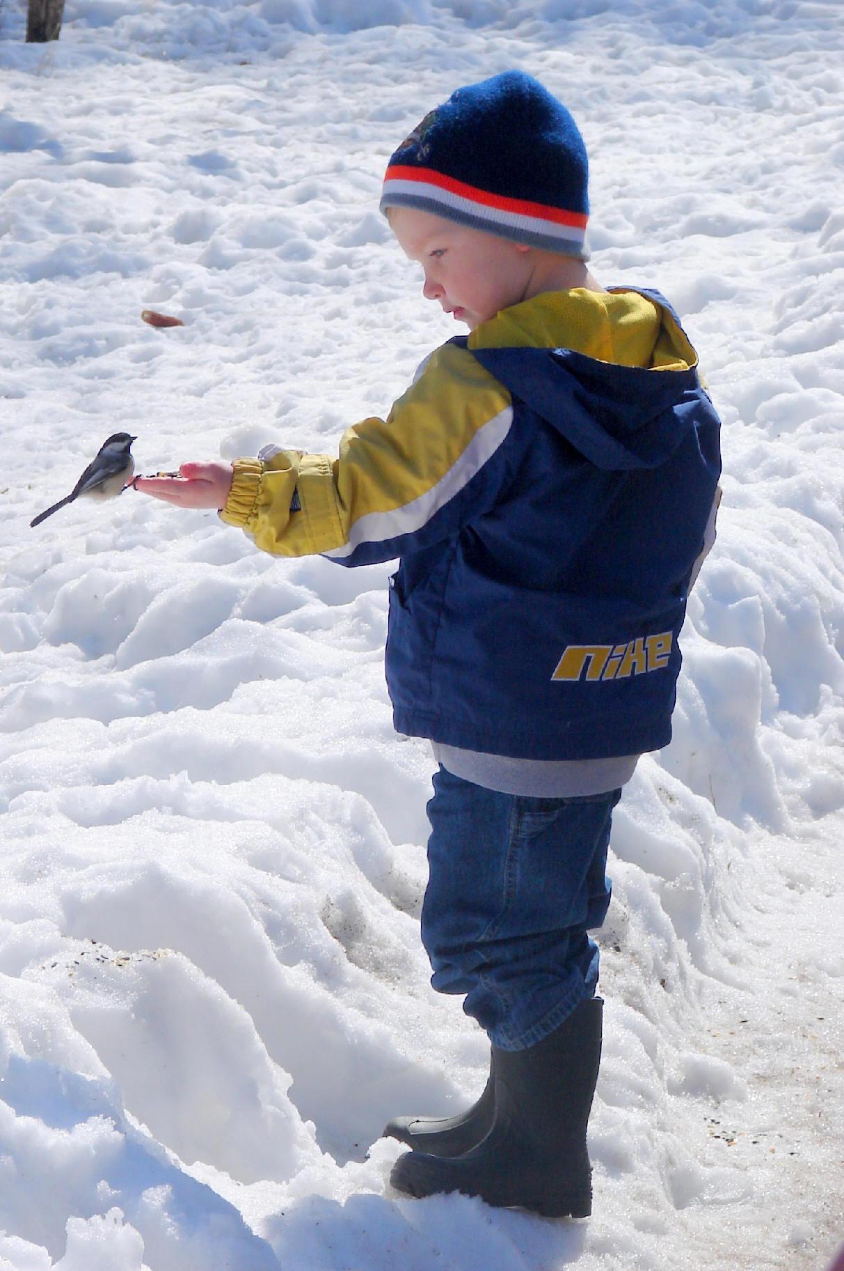 Photo by Rich Middleton, boy with Bird, Goose Island near La Crosse, WI